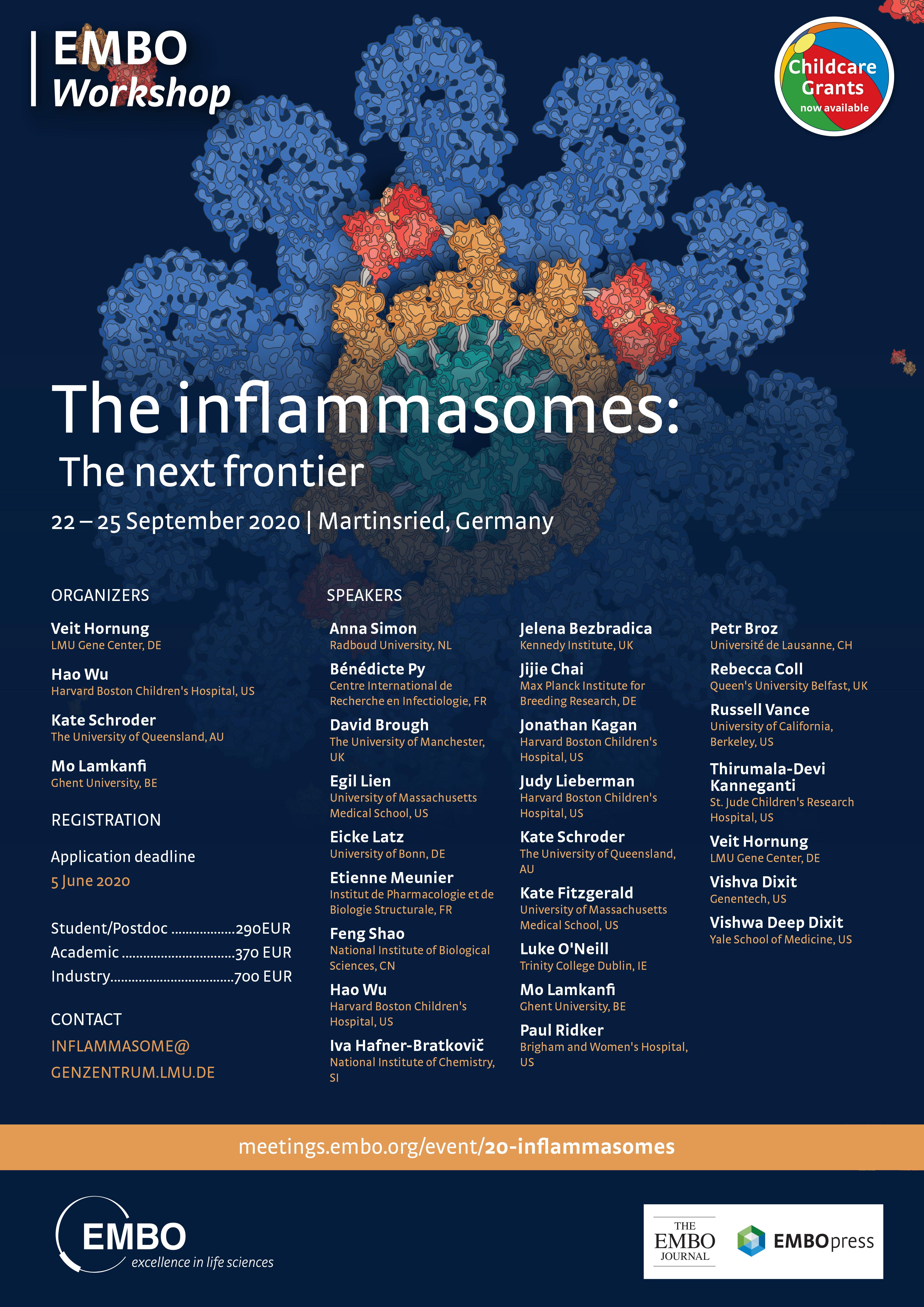 EMBO Inflammasomes 2020
